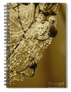 Golden Globes Spiral Notebook