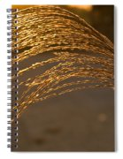 Golden Grass Spiral Notebook