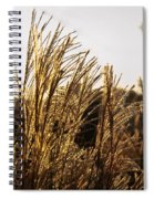 Golden Grass Flowers Spiral Notebook