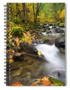 Golden Grove Spiral Notebook