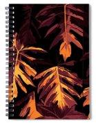 Golden Growth Spiral Notebook
