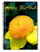 Golden Guinea Happy Birthday Spiral Notebook