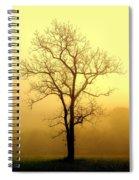 Golden Haze Spiral Notebook