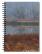 Golden In The Morning Spiral Notebook