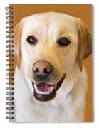 Golden Lab Spiral Notebook