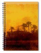 Golden Land Spiral Notebook