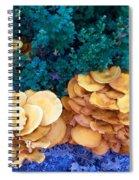 Golden Layer Spiral Notebook