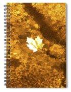 Golden Leaf In Water Spiral Notebook