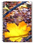 Golden Leaf Spiral Notebook
