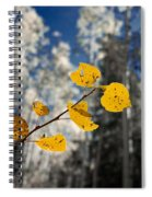 Golden Leaves Against A Muted Forest Spiral Notebook
