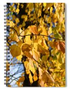 Golden Leaves Spiral Notebook