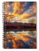 Golden Light On The Pond Spiral Notebook