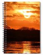 Golden Marsh Spiral Notebook