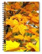 Golden Moments Spiral Notebook