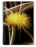 Golden Mum Spiral Notebook