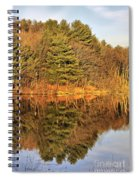 Golden Natural Light Spiral Notebook