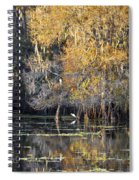 Golden On The River Spiral Notebook