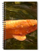 Golden One Spiral Notebook