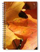Golden Orange Spiral Notebook