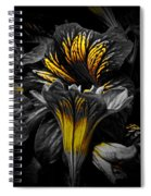 Golden Paintbrush  Spiral Notebook