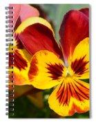 Golden Pansies Spiral Notebook