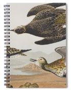 Golden Plover Spiral Notebook
