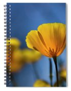 Golden Poppy Reaching For The Skies  Spiral Notebook