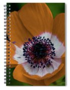 Golden Poppy Spiral Notebook