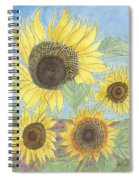 Golden Quartet Spiral Notebook