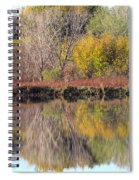 Golden Reflections Spiral Notebook
