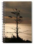 Golden Reflections Spiral Notebook