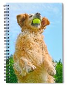 Golden Retriever Catch The Ball  Spiral Notebook
