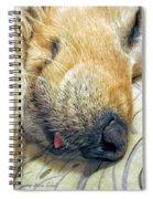 Golden Retriever Dog Little Tongue Spiral Notebook