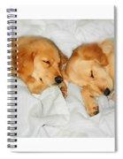 Golden Retriever Dog Puppies Sleeping Spiral Notebook