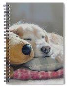 Golden Retriever Dog Sleeping With My Friend Spiral Notebook