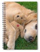 Golden Retriever Dog Teddy Bear Love Spiral Notebook