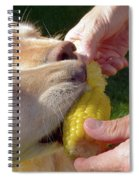Golden Retriever Dogs Corn Dog Summer  Spiral Notebook
