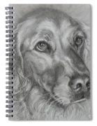 Golden Retriever Drawing Spiral Notebook
