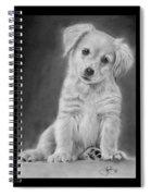 Golden Retriever Puppy Drawing Spiral Notebook