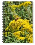 Golden Rod Spiral Notebook