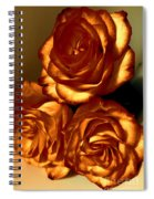 Golden Roses 3 Spiral Notebook