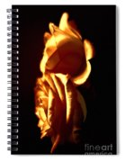 Golden Roses 4 Spiral Notebook
