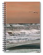 Golden Shore Spiral Notebook