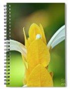 Golden Shrimp Plant Spiral Notebook