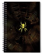 Golden Silk Spiral Notebook