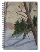 Golden Sky In The Snow Spiral Notebook