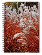 Golden Snow Spiral Notebook