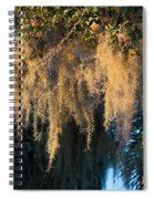 Golden Spanish Moss Spiral Notebook