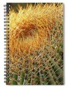 Golden Spines Spiral Notebook