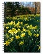 Golden Spring Carpet Spiral Notebook